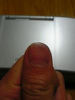 20070225.JPG